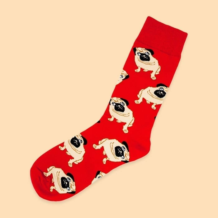 single pair of socks with pugs in red color from kumplo