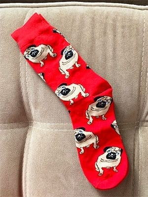 red color pug socks on couch