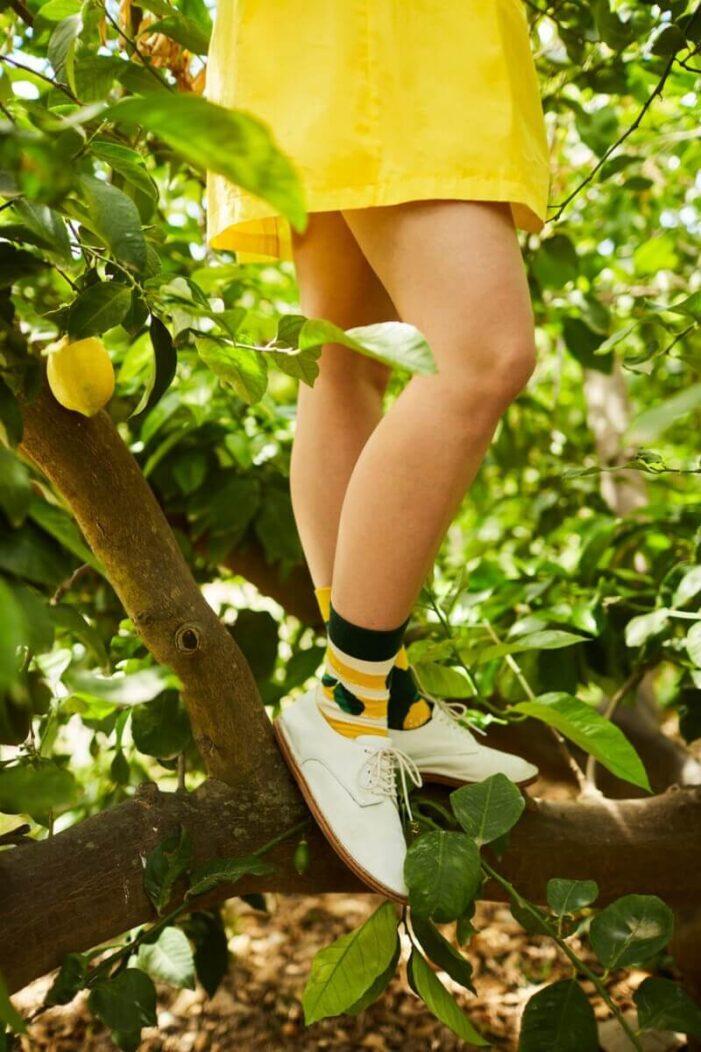 mismatched socks with lemons