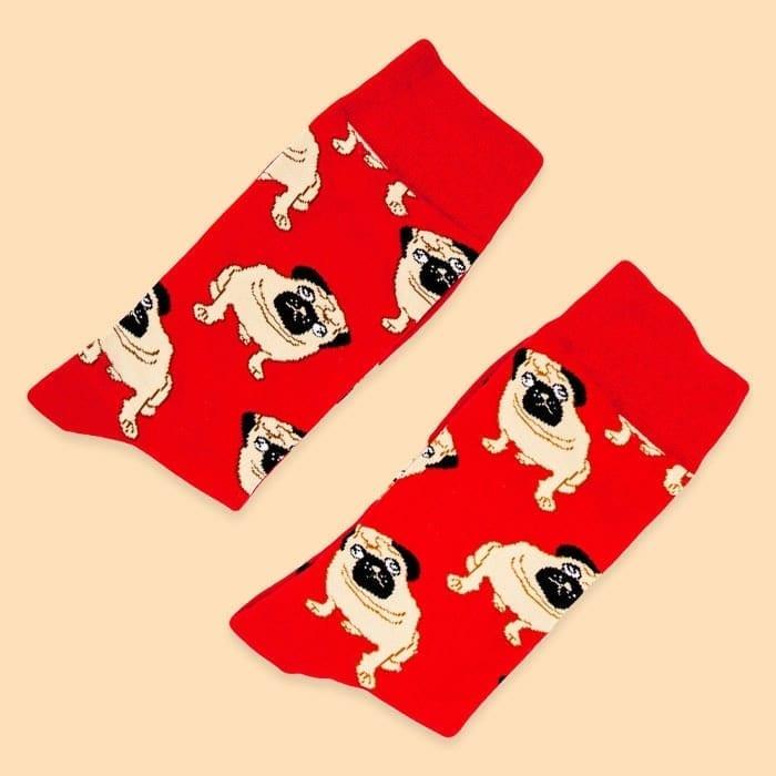 pug socks front