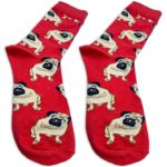 pair of red socks in pug pattern from kumplo