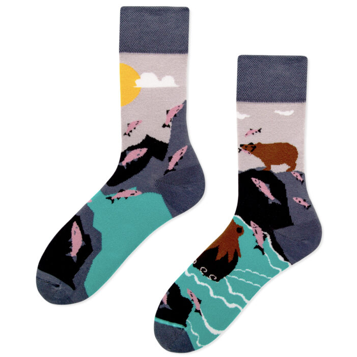 bear and fish socks