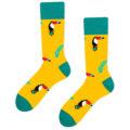 toucan socks yellow
